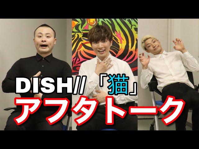 【アフタートーク】猫 / DISH//