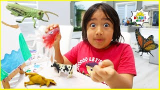 Ryan Pretend Play Bugs Catching and learning about insects for kids!!!