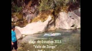 Zongo 2013 4 b