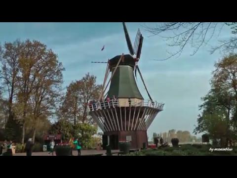 Tulpen aus Amsterdam Keukenhof 2017 NL HD 1080p50  YouTube