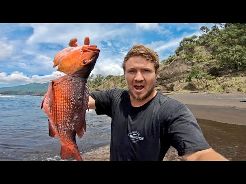 Living From The Sea - Red Fish Catch Clean N Cook