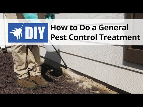 How to do a General Pest Control Treatment - DIY Pest Control | DoMyOwn.com
