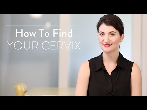 Conception 101: How To Find Your Cervix