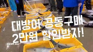노량진수산시장 대방어 킹크랩경매가격 공동구매!
