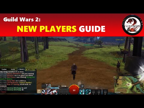 Guild Wars 2: New Players Beginners' Guide │ Playing the Game & Getting to Level 80