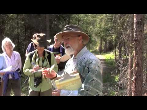 Wild Edible and Medicinal Plants with Michael Pilarski
