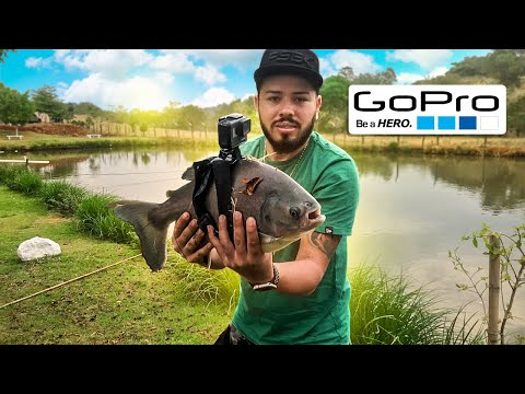 AMARREI UMA GOPRO EM UM PEIXE (I Strapped a GoPro on a Fish)