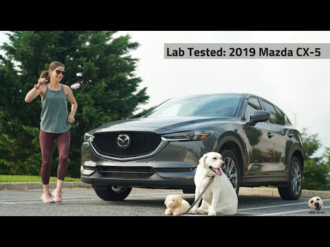 2019 Mazda CX-5: Andie the Lab Review!