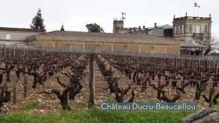 GVWM tastes 2012 Bordeaux at the Union des Grands Crus