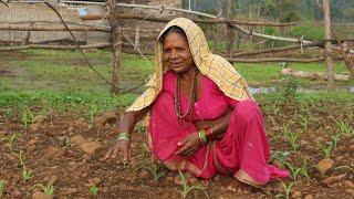 Dangi language | Words of life Dangi people | Dangs Tribes | Dang Women | Gujarat | India | Farmer