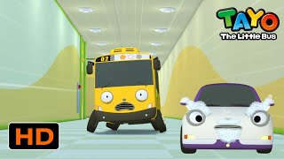 Tayo English Episodes l Hide! There's Ms.Teach! l Tayo the Little Bus