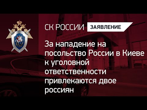 За нападение на посольство России в Киеве к уголовной ответственности привлекаются двое россиян