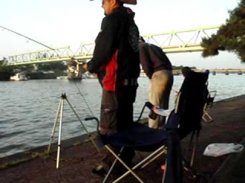 Rogerio pescador gay , futema ,