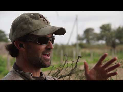 "Argentina Dove Hunting | Pure Hunting S.5, Ep.508 ""ARGENTINA BIRDS"""