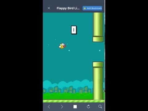 Flappy is crappy/flappy bird #2