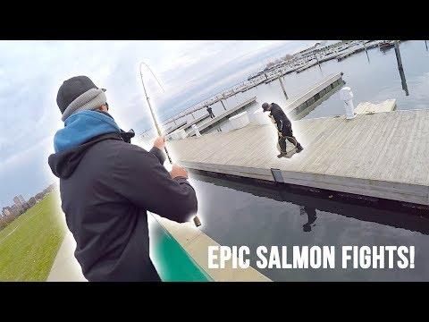 Epic Salmon Fights! | Harbor Fishing