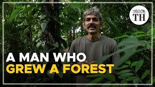 This man from Kerala grew a mini-forest on his land