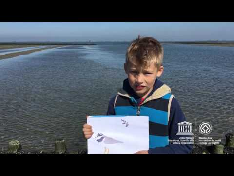 Rasmus and Artur #MyOceanPledge Wadden Sea World Heritage marine site