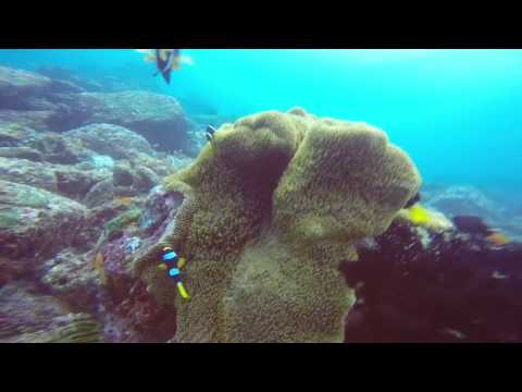 Pulau Weh, Aceh, Indonesia Diving