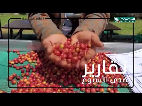 البن اليمني.. حاضرا باكثر من فعالية في اليوم العالمي