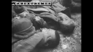 German War Crimes in Soviet Union 1941-1943 (Graphic)