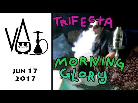 Trifecta Morning Glory ( shisha ) review wit Gnome