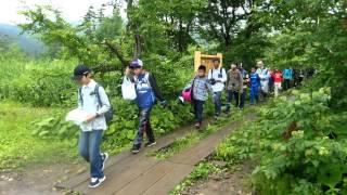 佐野日本大学中等教育学校 2013林間学校二日目 尾瀬を歩く③復路やまのはな