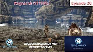 Otter Tame Xbox One Ragnarok E20 Ark Survival Evolved Dedicated Server - Otter Fishing