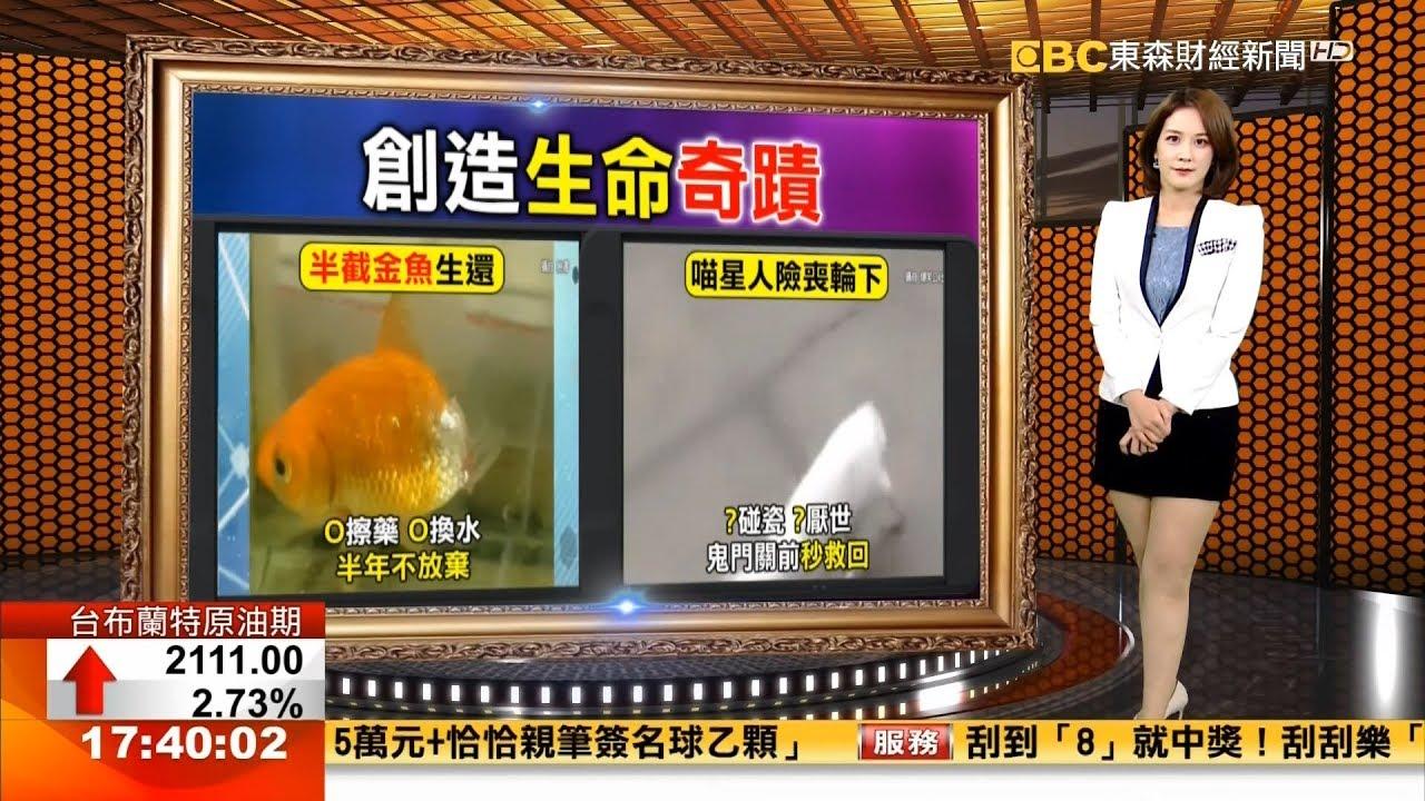 東森財經主播李仲祥 新聞播報片段(2019/9/17) - YouTube