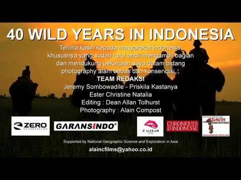 40 years i Indonesia, introduction