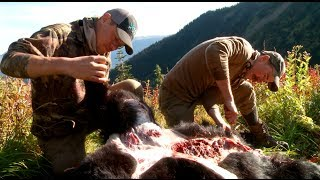 How to Skin and Butcher a Black Bear with Steven Rinella - MeatEater