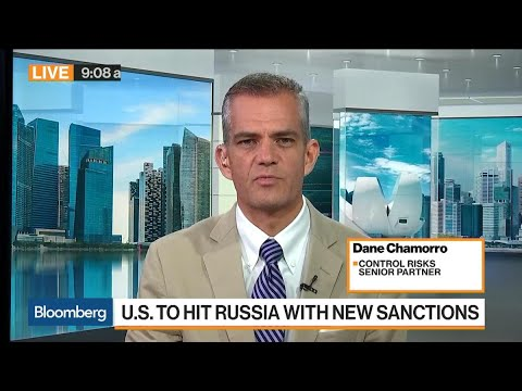 Control Risks' Chamorro Says Syria Attack Was Message to Russia