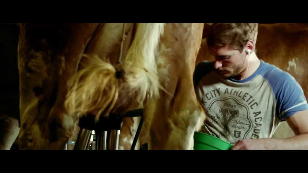 """Download """"Rise up! And dance""""  Folge Deinem Herzen - Trailer"""