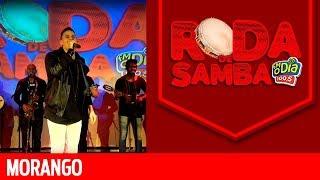 Baixar Cantor Morango na Roda de Samba da FM O Dia