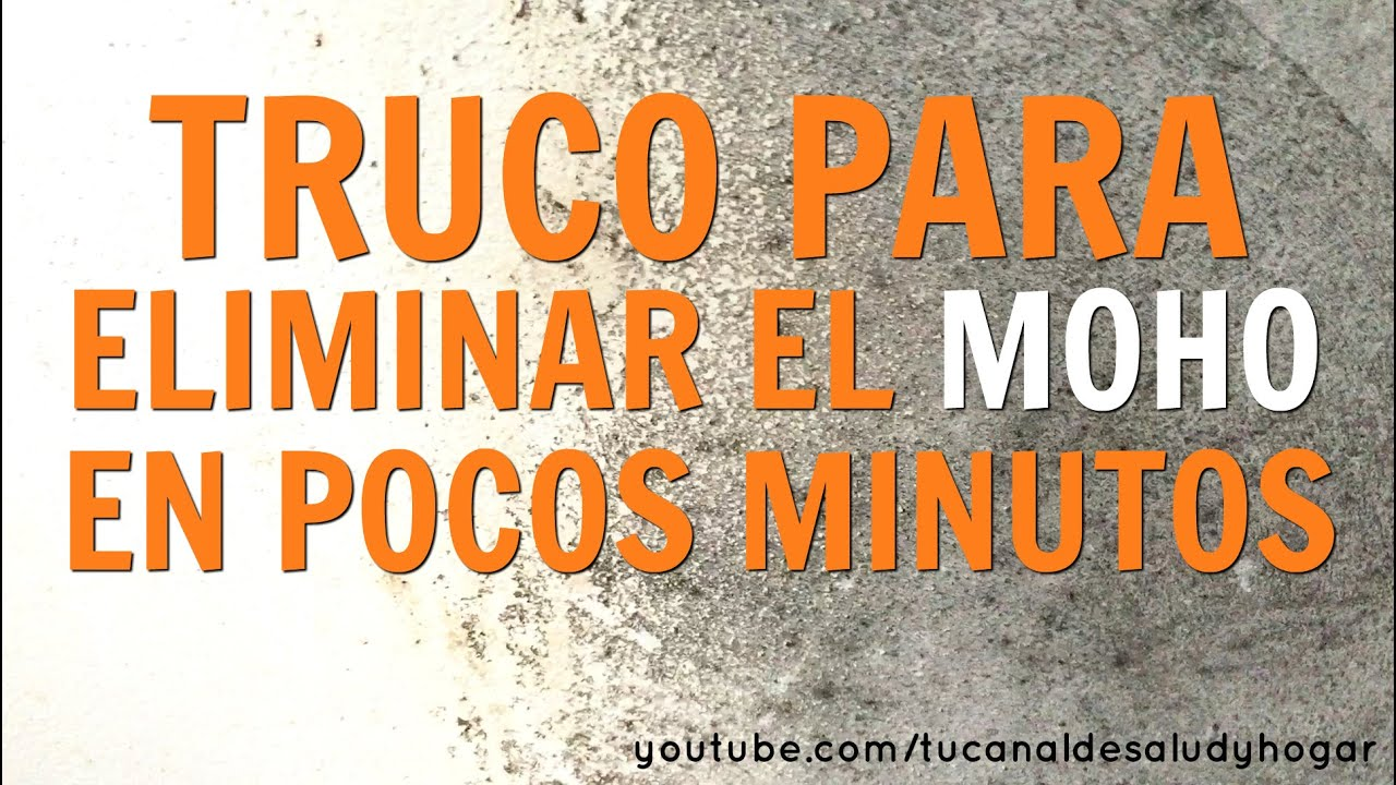 C mo quitar el moho en minutos youtube - Como quitar moho de la pared ...