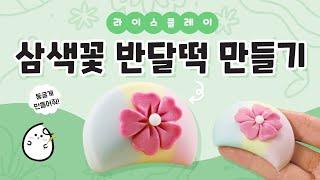 3색 꽃 송편  먹을 수 있는 라이스 클레이 만들기…