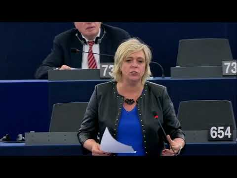 Hilde Vautmans 23 Oct 2018 plenary speech on Schengen Information System