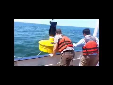 Wave Energy Project at Virginia Tech