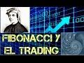 Retrocesos y Extensiones de Fibonacci - YouTube