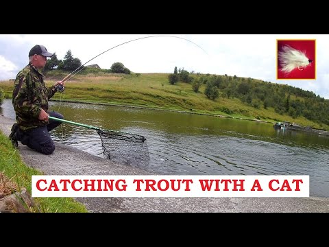 Trout Fly Fishing Tips UK ( Fritz Cats Whisker ) How To Catch Trout