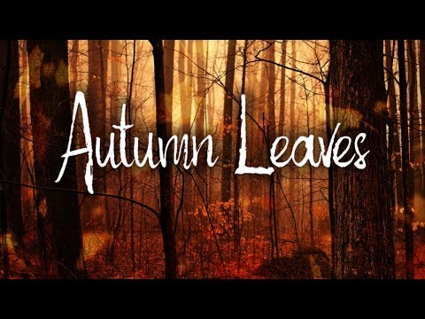 Autumn Leaves | Eva Cassidy Karaoke
