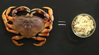 How to Break Down Fresh Crab Like a Pro - Kitchen Conundrums with Thomas Joseph