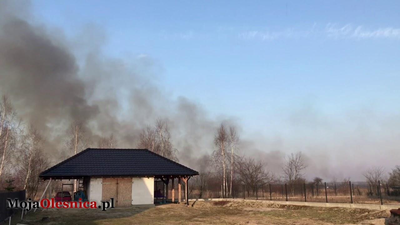 4.03.2018 Oleśnica – pożar nieużytków