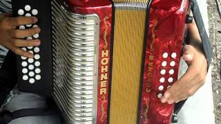 la juntera en acordeon 5 letras