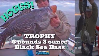 How to cath Atlantic Black Sea Bass with Jim Brincefield Jim Baugh Outdoors TV  amazing Trophys