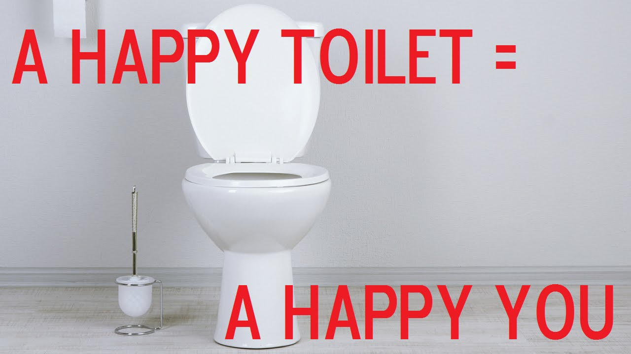 Toilet training for adults