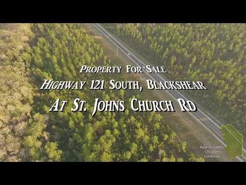 Highway 121 S, Blackshear Ga