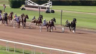 Vidéo de la course PMU PRIX DE SALAVAUX