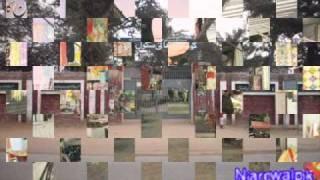 Narowal City