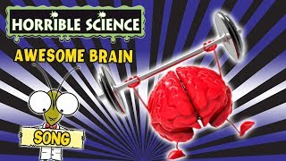 Horrible Science - Awesome Brain | Science Songs | Science for Kids